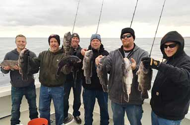 Group shot of each of the men bundled up in fall/winter clothing on an overcast day, holding up the blackfish (Tautog) they caught.