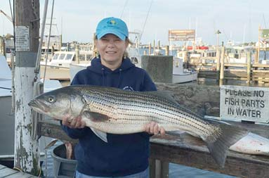 Back at the marina, a woman holds up the striped bass she caught.