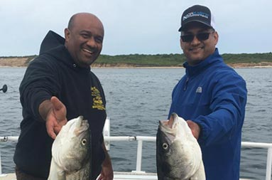 Two men smile as each hold up striped bass.