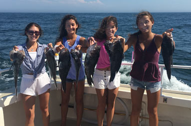 Four adolescent girls smile for the camera and each hold up 2 sea bass.