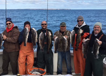 With a clear blue sky behind then, a group of 7 men wearing winter gear and clothing, each hold up two blackfish in their hands.